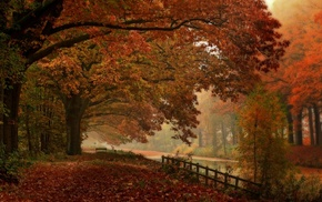 landscape, mist, fall, nature, forest, fence