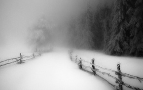 snow, morning, daylight, winter, landscape, path