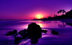 beach, sunlight, sea