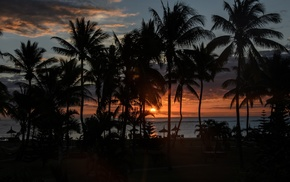 sunset, silhouette, Sun, palm trees