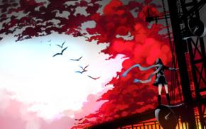 windy, birds, scarf, clouds, anime girls, megaphones