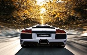depth of field, trees, Lamborghini Murcielago LP640, 4, motion blur, Lamborghini