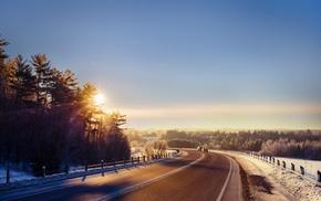 winter, landscape, sunlight, road