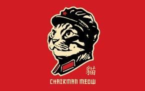 cat, minimalism, humor, parody