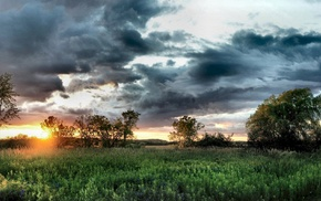 sunset, grass, HDR, clouds, nature, trees