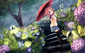 umbrella, anime girls, original characters, anime, flowers, rain