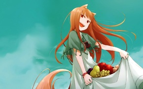 Okamimimi, Spice and Wolf, anime girls, anime, wolf girls, Holo
