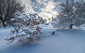 winter, snow, landscape, nature