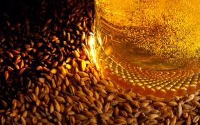 beer, bubbles, barley