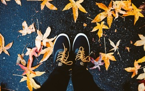 maple leaves, feet, shoes, fall, leaves, birds eye view