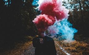 smoke, forest
