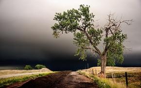 landscape, trees, road, storm, clouds