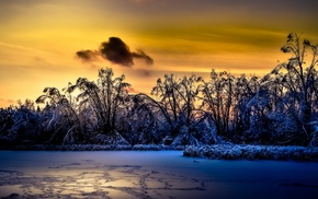 sunlight, landscape, winter, nature