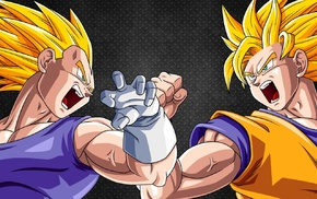 Vegeta, Super Saiyan, Son Goku, Dragon Ball Z