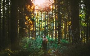 girl, forest, sunlight