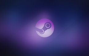 PC Master  Race, Steam software