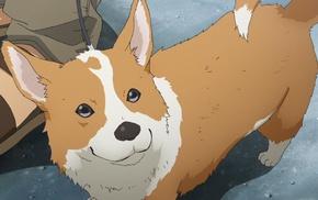 dog, artwork, Corgi, animals