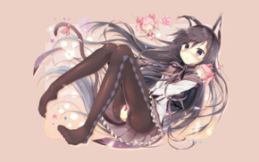 anime, anime girls, cat girl, Akemi Homura, Mahou Shoujo Madoka Magica