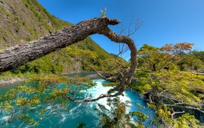 river, landscape, trees, water, turquoise, nature