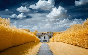 house, field, clouds, yellow