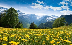 mountains, nature, sky, yellow
