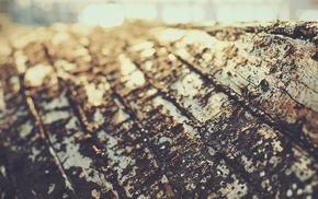 filter, texture, wood, depth of field