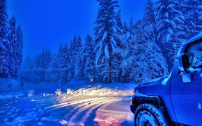 snow, winter, forest, sky, car