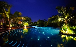night, palm trees, water, forest