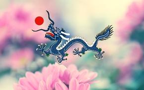dragon, flowers