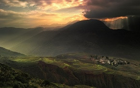 sunlight, terraces, sky, village, China, rice