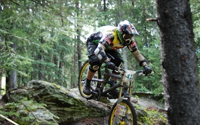 mountain bikes, sports, bicycle, forest, sport, Downhill mountain biking