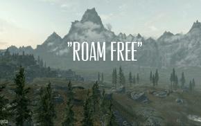 forest, The Elder Scrolls V Skyrim, The Elder Scrolls, video games