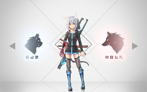 zettai ryouiki, anime, weapon, tail, gray hair, animal ears