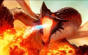 fantasy art, dragon, artwork