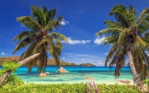 nature, summer, palm trees, island, landscape, beach