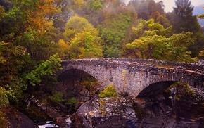 trees, Scotland, bridge, nature, river, landscape