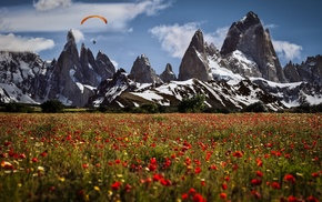 nature, mountains, snow, flowers, landscape