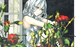 anime, original characters, window, flowers, silver hair, rose