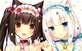 Chocolat Neko Para, cat girl, Neko Para, Vanilla Neko Para, anime, anime girls