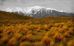 grass, mountains, nature, landscape, plains