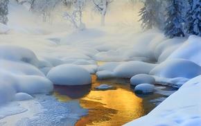 Siberia, trees, landscape, creeks, Russia, nature