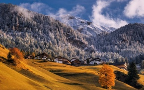 village, trees, fall, mountains, dry grass, Alps