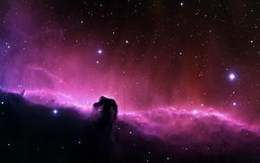 stars, space, nebula, Horsehead Nebula