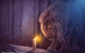 fantasy art, magic, girl, lion, fantasy girl, MohammadKhan