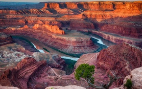 Utah, shrubs, river, nature, canyon, national park