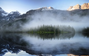 landscape, nature, reflection, pine trees, mist, mountains