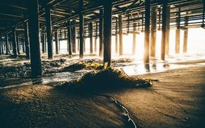 seaweed, sunset, sunlight, California, pier, beach