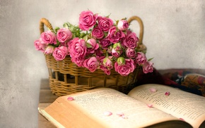 rose, flowers, books, baskets, pink flowers