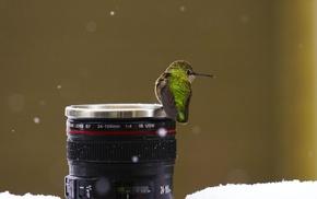 lens, birds, snow, macro, hummingbirds