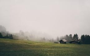 grass, landscape, house